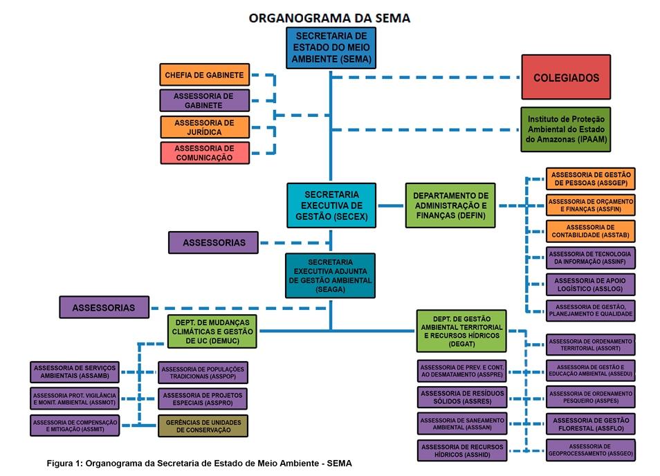 ORGONOGRAMA SEMA 2017 - SITE